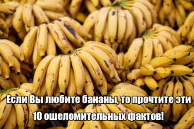 10-banancik-400x267-8997194