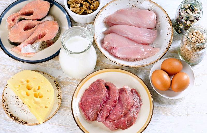 foods-high-in-protein-diet-eating