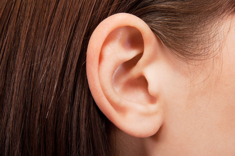 human-ear-closeup