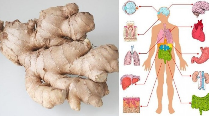 eat-ginger-every-day-for-1-month-and-this-will-happen-to-your-body-696x385-1-2617242